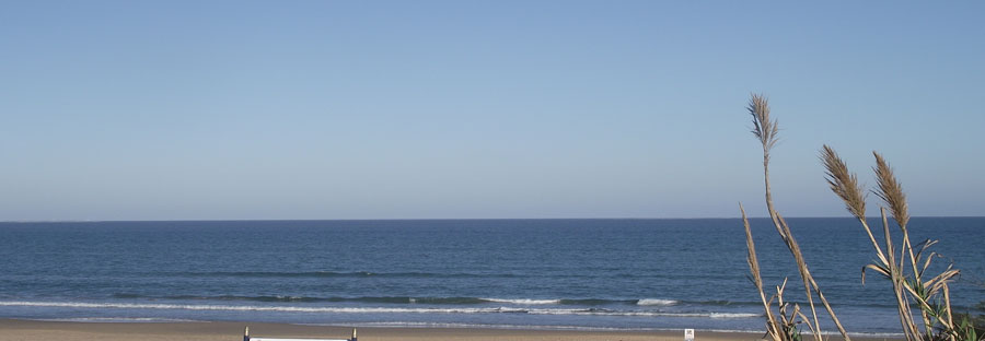 pinada beach guardamar